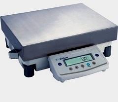 Весы CitizenScale